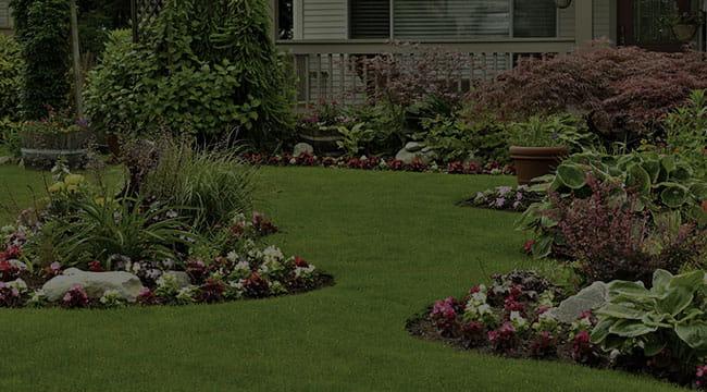 Plover Landscape Design